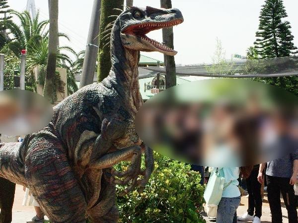 肉食恐竜ヴェロキラプトル(ラプトル&ラプター