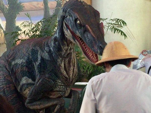肉食恐竜がレストランの中を歩き回ります