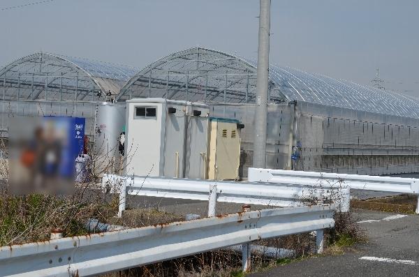 いちご畑の仮設トイレ