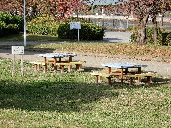 白鳥公園のベンチ