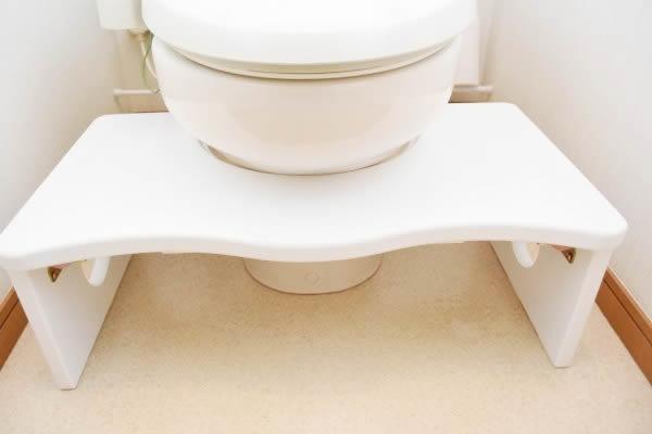 トイレトレーニング用の踏み台